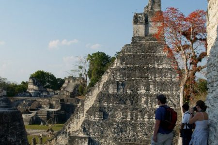 Lasers Reveal a Maya Civilization So Dense It Blew Experts' Minds