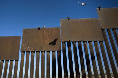 Judge Dissed by Trump Won't Block Border Wall in California