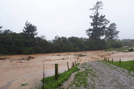 Cyclone Gita slams New Zealand