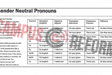 'Pronouns matter': Georgia college suggests 'ne' and 've' as gender-neutral words