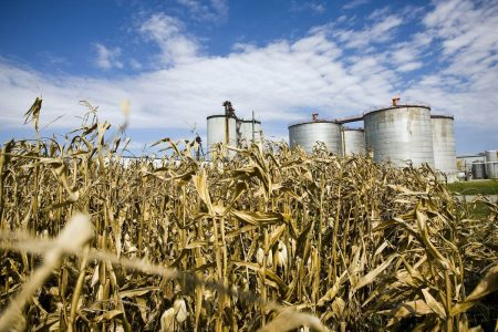 Trump Ethanol Moves May Be Worse for Farmers Than Soy Tariff