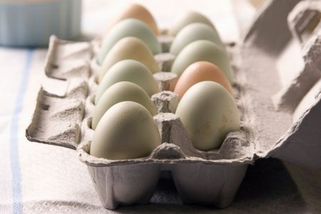 Over 200 million eggs recalled for salmonella concerns; sold at Walmart, Food Lion stores