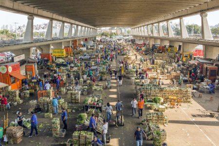 Brazil Working Around Strike But Fuel, Food is Still Scarce