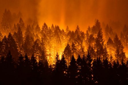 Teen who started fire that burned 48000 acres ordered to pay $36 million