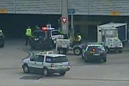 Baboon escapes crate at San Antonio airport, flees to baggage area