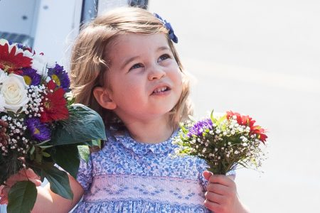 Princess Charlotte Dazzles Like the Royalty She Is in Third Birthday Photo