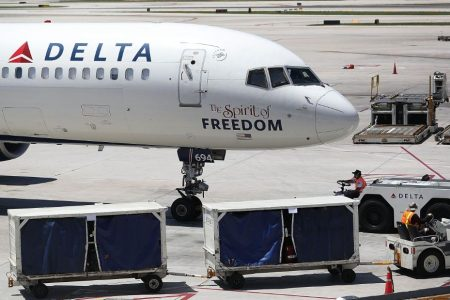 Dog dies during Delta Air Lines layover in Michigan