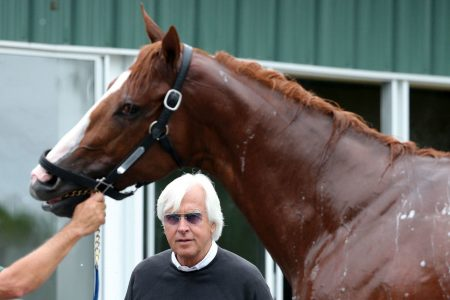 Justify's path to cusp of Triple Crown is unusual. But so is training a 1380-pound athlete.