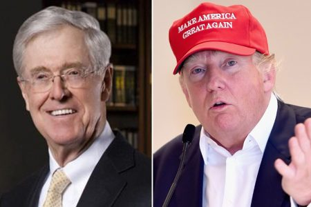Top Koch network official: 'The divisiveness of this White House is causing long-term damage'