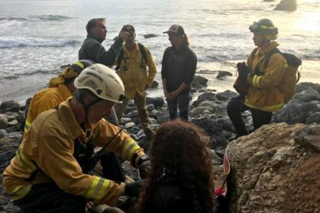 'Life is incredible': Woman who survived 7 days after SUV plunged off cliff shares her story