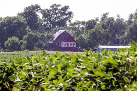 Political path for Trump, Republicans in midterms cuts through America's soybean fields