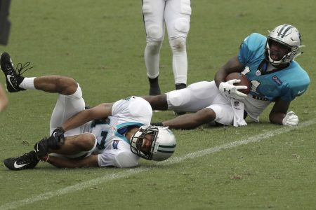 Panthers CB Ross Cockrell suffers an injury so horrible you could hear it