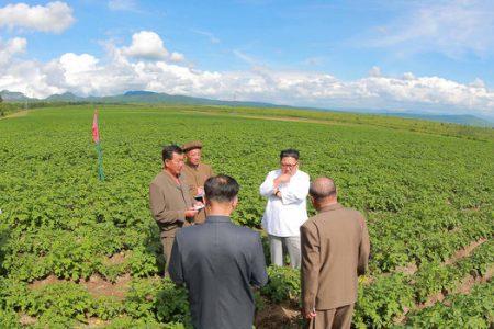 Touring North Korean Farms and Factories, Kim Jong Un Signals a Shift