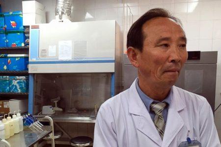 Despite detente, sanctions on North Korea fan TB epidemic