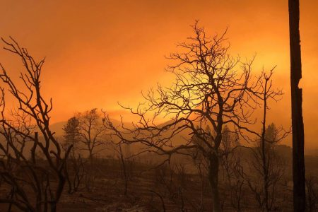 Wildfire destroys at least 500 structures in Northern California