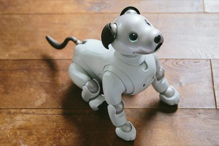 Sony's cute — and super smart — robot dog is coming to the US