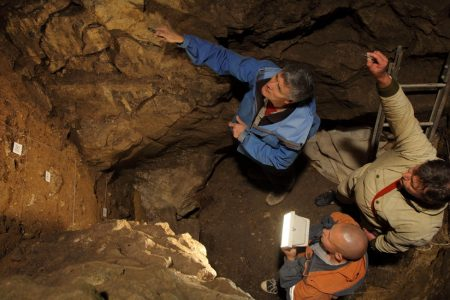 A Blended Family: Her Mother Was Neanderthal, Her Father Something Else Entirely