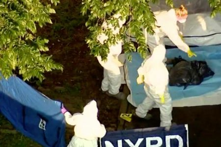 Dismembered Body Found in Trash Bags Outside Bronx Park