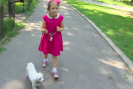Neighbor Calls Police, Child Services About 8-Year-Old Girl Walking Dog