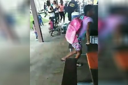 Florida armed bystander stops gunman at crowded back-to-school event at park, police say