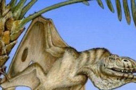 Oldest pterodactyl fossil discovered in Utah desert