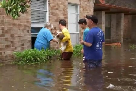 Toxic homes: The invisible threat after Hurricane Harvey