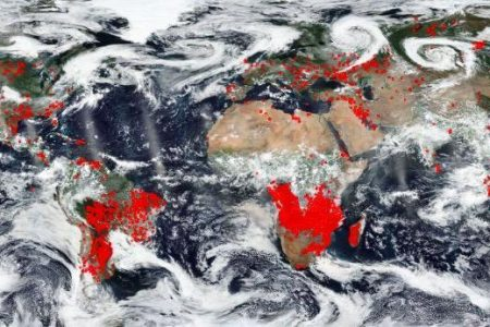 Global Wildfires: NASA Image From Space Shows 'World Is on Fire'
