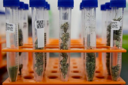 Many California marijuana products failing safety tests