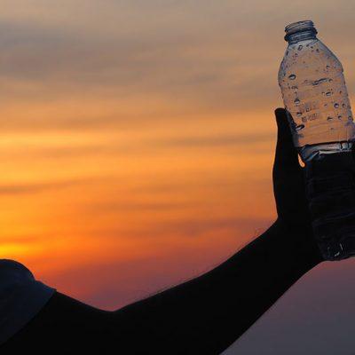 BPA-free plastics seem to disrupt sperm and egg development in mice