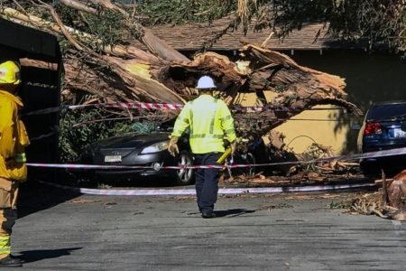 California utility shuts off power amid wildfire concerns