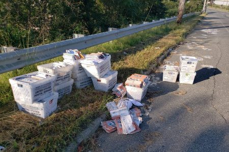Postal Worker Quits, Dumps Hundreds of Letters on Side of the Road