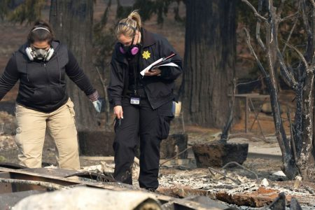 Hundreds volunteer to spend Thanksgiving searching for California wildfire victims