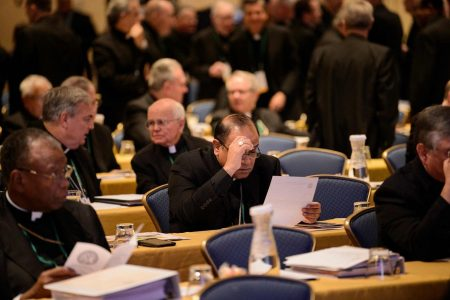 Vatican asks US bishops not to vote on their proposals to tackle sexual abuse