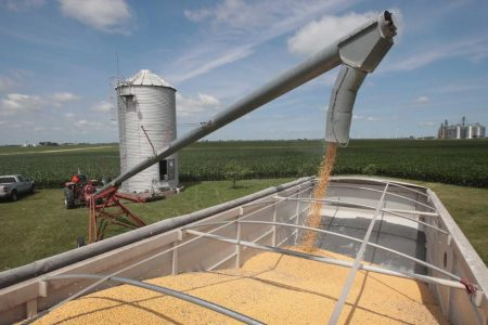 A good thing that happened to Trump this week: China bought soybeans – CNN