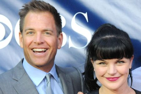 Michael Weatherly's former 'NCIS' co-stars support him after Eliza Dushku sexual harassment allegations – Fox News