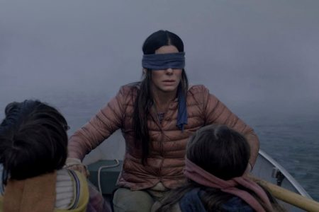 Driving blindfolded for the 'Bird Box challenge?' Just don't, officials say. – Washington Post