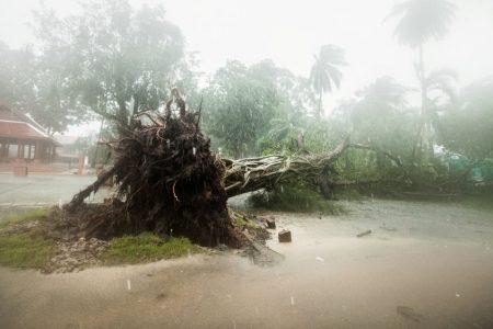 One dead as tropical storm Pabuk strikes southern Thailand – Al Jazeera English