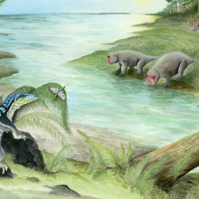 Scientists Discovered a Dinosaur Ancestor Called the 'Antarctic King' – Motherboard