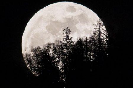 Super snow moon, 2019's biggest supermoon, lights up the sky – CNN
