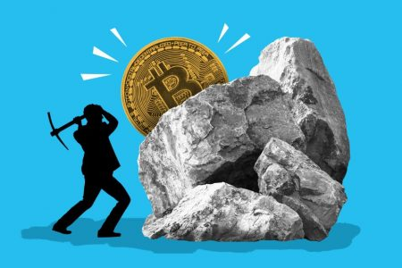 Should investors own any bitcoin in their portfolio? – CNN