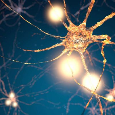 Simple drug formula regenerates brain cells – Medical News Today