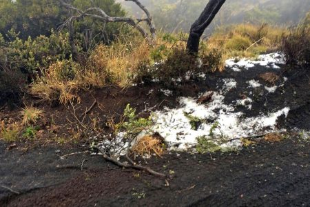 Hawaii snow: Winter storm watch for Haleakala, Mauna Kea, Mauna Loa – USA TODAY