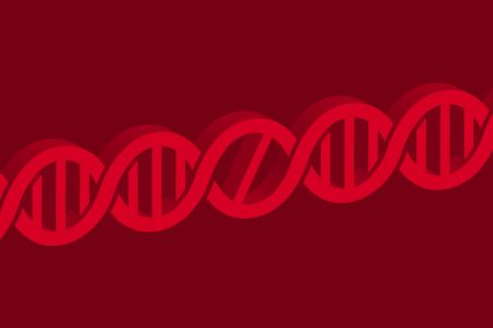 National Institutes of Health director and top science experts call for global moratorium on editing heritable genes – Axios