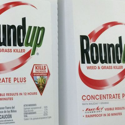 Roundup weed killer was a substantial factor in man's cancer, California jury determines – USA TODAY