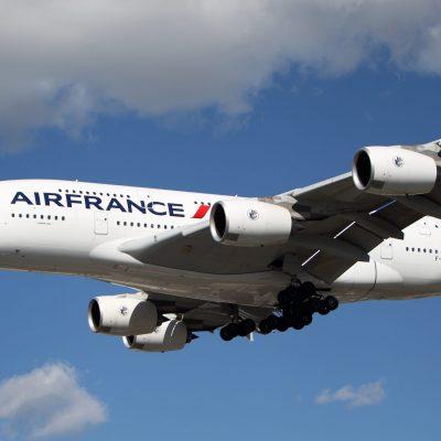 Passenger's dog found dead following Air France-KLM flight – Fox News