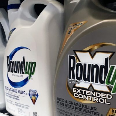 Roundup weed killer substantial factor in California man's cancer, jury rules – Fox News