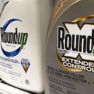Second US jury finds Roundup weed killer caused cancer – ABC News